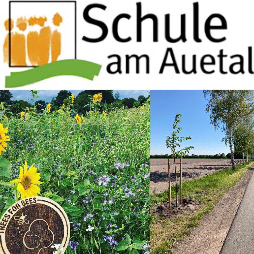 """25 Bäume für 25 Jahre """"Schule am Auetal""""!"""